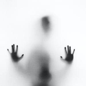 暗殺者の妄想知覚から精神分裂病(統合失調症)を考える 暗殺学