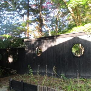 中野邸記念館に植えられた130種2000本余りの紅葉