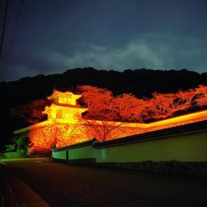 夜の城下町
