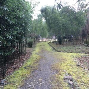 無料キャンプへGO!静岡清水森林公園黒川キャンプ場(静岡県)②