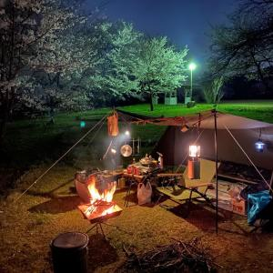 格安で夜桜と満月と焚火で大満足!上和田緑地キャンプ場(富山県)