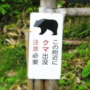 クマ出没昨年の倍!キャンプで持ってて安心な熊よけグッズ7選!
