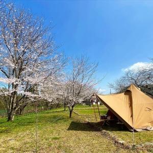 富山でお花見キャンプならここで決まり!上和田緑地キャンプ場!(富山県)