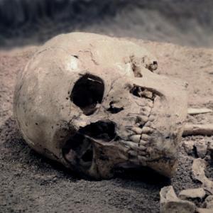 【衝撃事実】人間の死体は死後1年以上動き続ける!?