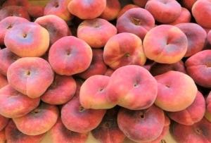 【フランスの夏に美味しい果物】平たい桃