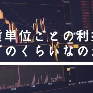 FXトレードの通貨単位ごとの利益はどのくらいなのかについて