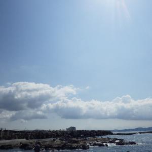 ☆平成30年 湘南 江の島 石鯛4
