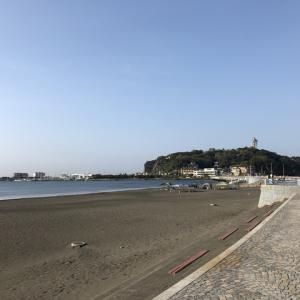 ☆ 平成 31年 湘南 江の島 石鯛 1