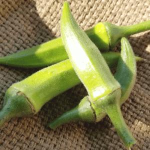 #オクラ #収穫!! #オクラ の #葉っぱ が #一晩 で取れちゃった。。。 #畑 #blog