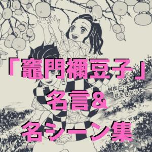 【鬼滅の刃】 竈門禰豆子(ねずこ)の名言・可愛い名シーン・セリフまとめ