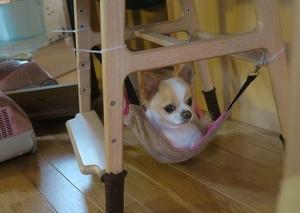 椅子の下にハンモック