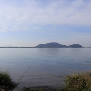 湖畔に、茶シロちゃんがいた~