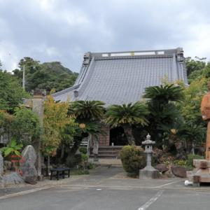 ハチワレちゃんのいるお寺