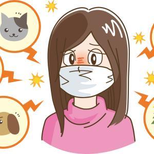 アレルギー検査について