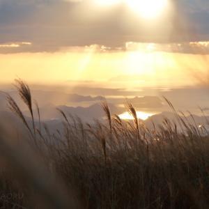 ススキの名所・生石高原にススキと夕日を撮りに…【和歌山県】