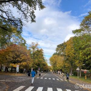 札幌のコロナ感染者増加にうんざり