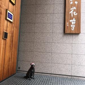 どこもかしこも人が居なくて....札幌