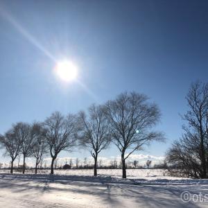 私にやっと訪れた静かなお正月