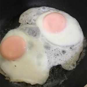 卵をより美味しく‼️卵料理の基本とレシピ集