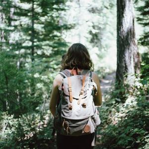散歩の習慣化を楽しむ3つのアイデア