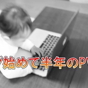 ブログ初心者が知識ゼロでブログ始めて6ヶ月目(半年)のPV報告・収益【はてなブログ】