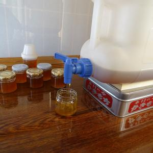 ♪日本ミツバチ、再び採蜜 その後♪