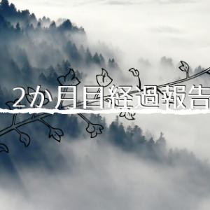 ブログ2ヵ月目経過報告(pv,投稿数,収益 etc..)