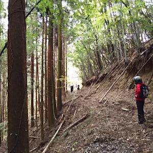 【動画】YSP福山超近場林道ツーリング2 前編
