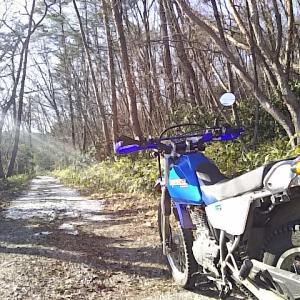 晴れの国の林道を走ってきました!