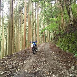 兵庫県 播磨 野尻阿舎利林道