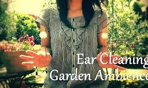 【ASMR】庭で耳かき (環境音) Ear Cleaning & Garden Sounds No talking