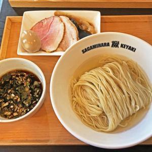 改めて旨いレギュラーメニューの「味玉つけ麺」:Sagamihara 欅