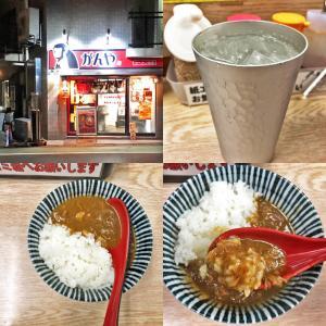 相模大野カレーフェスティバル2020⑥:がん家さんの「豚骨スープ仕込みのチャーシューカレー