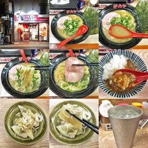 柚子塩に合うとんこつスープはオンリーワン:ラーメン食堂 がんや