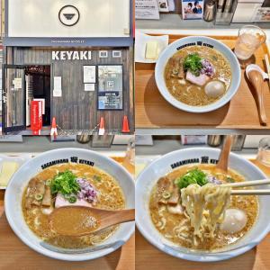 「味噌らーめん」バタートッピングが激ウマだった!:Sagamihara欅