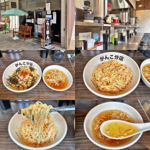 一条流がんこ総本家 相模原分店の「メンタイコマヨネーズおろし麺」