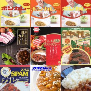 みんな大好き!日本のご当地カレー⑩:沖縄のカレー