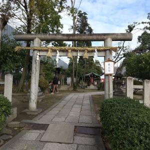 御朱印帳 元日 初詣 【京都】の【厳島神社 】と【綾戸國中神社】