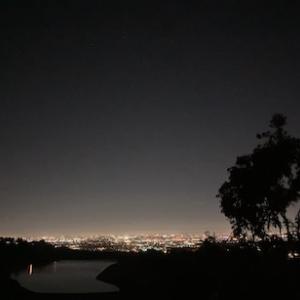 街の灯りが邪魔をする