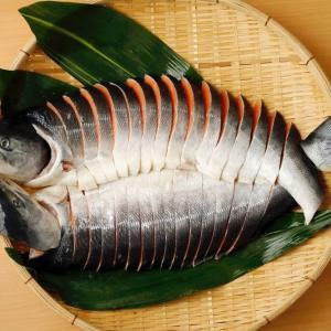 大きな時鮭【天然・北海道産】稀少品4.0kg ¥16,850→15,165円 2021年7月末まで、10%OFFで、お得なお買い物をどうぞ!