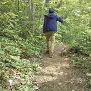 お散歩 青森 浅虫森林公園