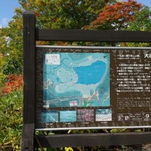 十和田八幡平国立公園 「大沼自然探勝路案内図」