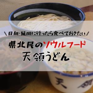 【宮崎 うどん】宮崎県北に行ったら必ず食べておきたい県北のソウルフード/天領うどん