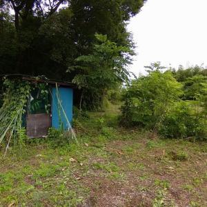 畑に小屋あり 川沿いに憩いあり
