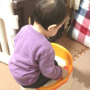 2歳のトイレトレーニングの記録  成功と失敗