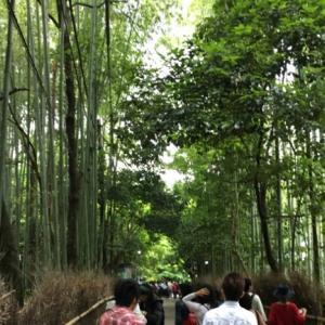 京都☆嵐山へ旅行