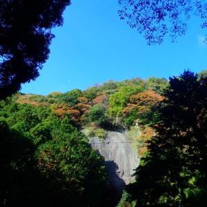 2019.11.20 広沢寺人工登攀講習会