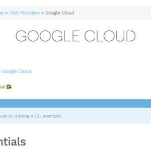 [技術メモ][IT][証明書] legoを使用してAWS EC2からあえてGoogle CloudへDNS認証する