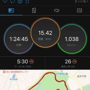 9/15(日)MGC観戦からの10キロLT走