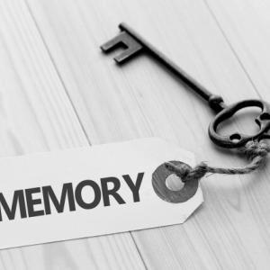 歳をとった私の記憶力の容量について次男に話したところ・・・